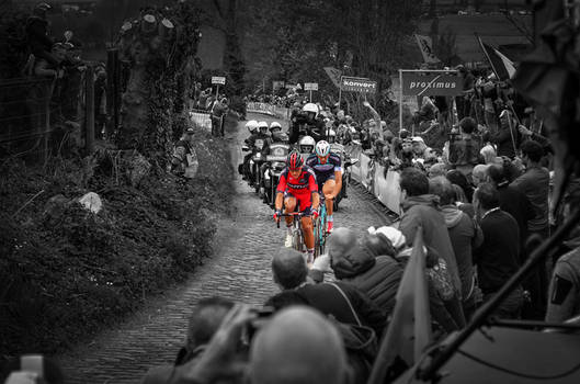 Ronde Van Vlaanderen 2014 #3