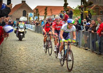 Ronde Van Vlaanderen 2014 #9
