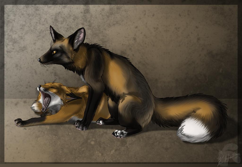 Boredom Foxes by Krissyfawx