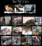 Red Fox Color Chart live pics