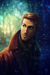 The Silver Eye - Winter Noah by LauraHollingsworth