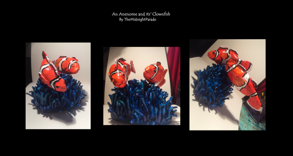 An Anenome and Its' Clownfish by TheMidnightParade