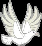 White Dove by AndoAnimalia