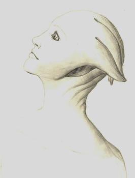 Liara - sketch book