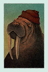 Walrus Jacques (CG) by Hands-hooks