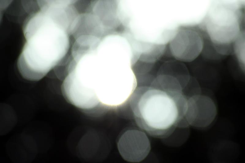 sun_blush by stormMajki