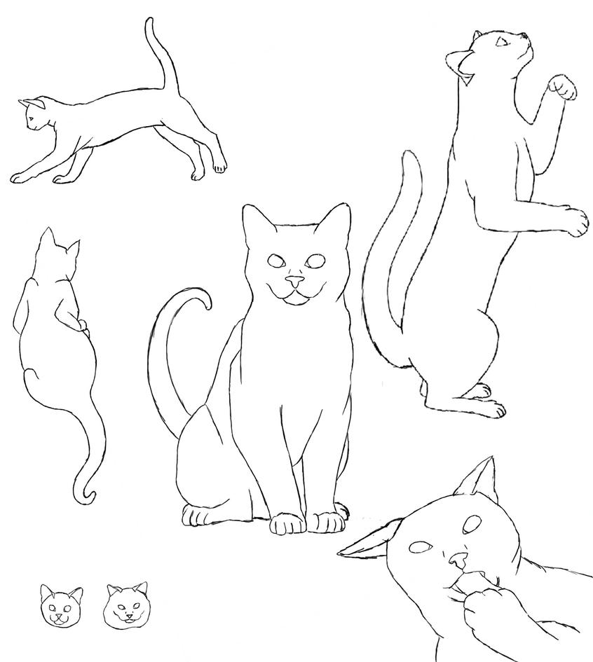 Cats mating drawing