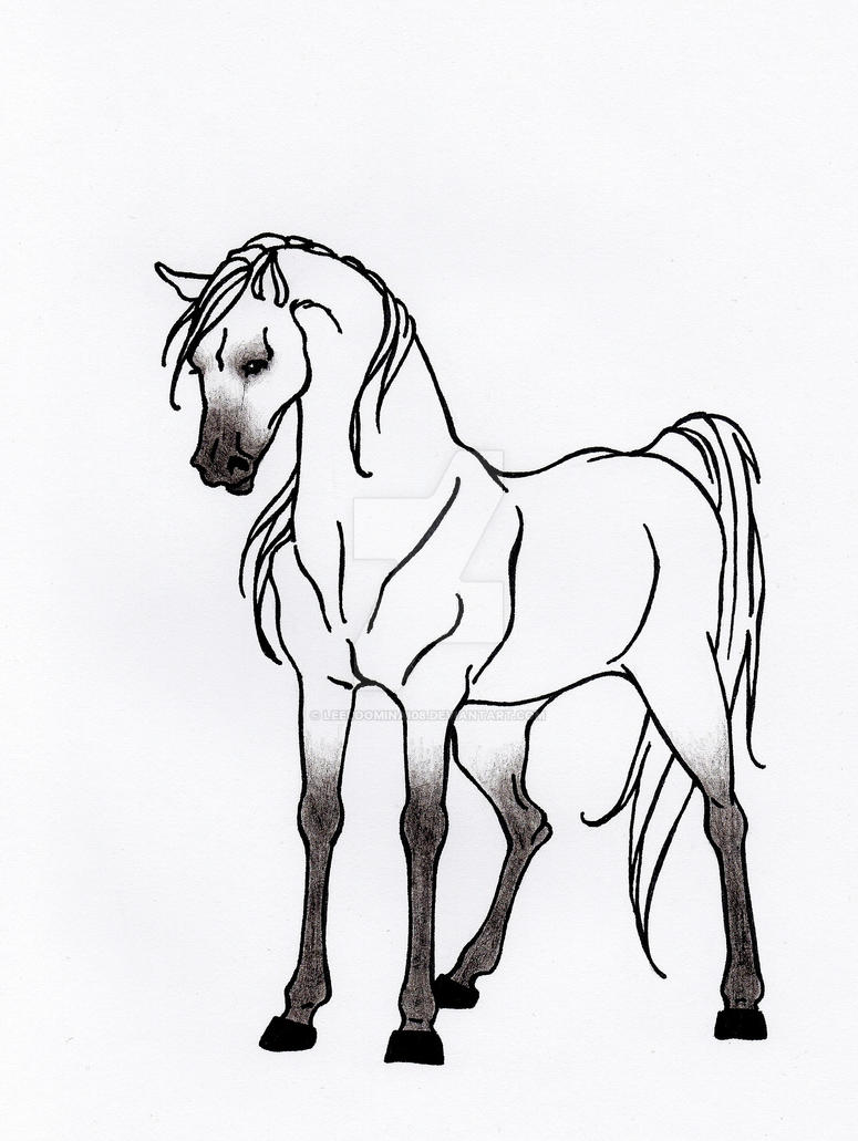White fantasy by Leeloominai08