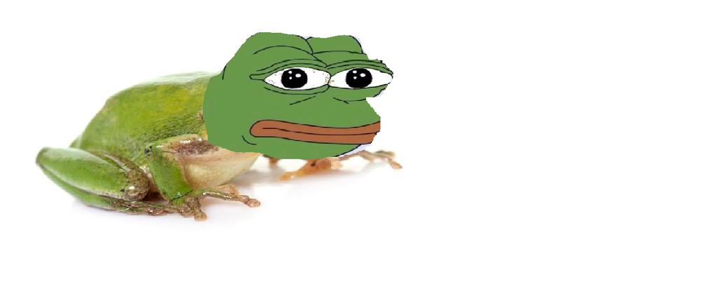 the pepe frog wallpaper - photo #35