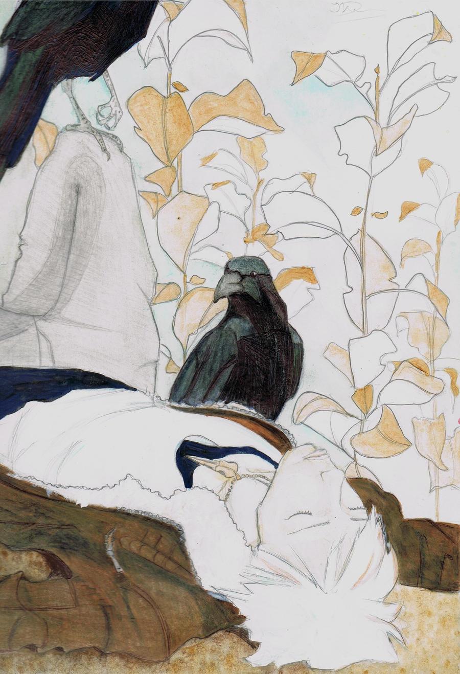 Crow Field by odangodumpling