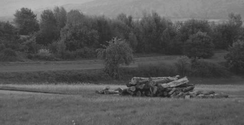 Slow-Paced Land by Jabawock