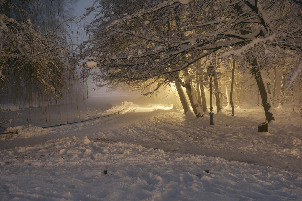Winter stock at night by darkoantolkovic