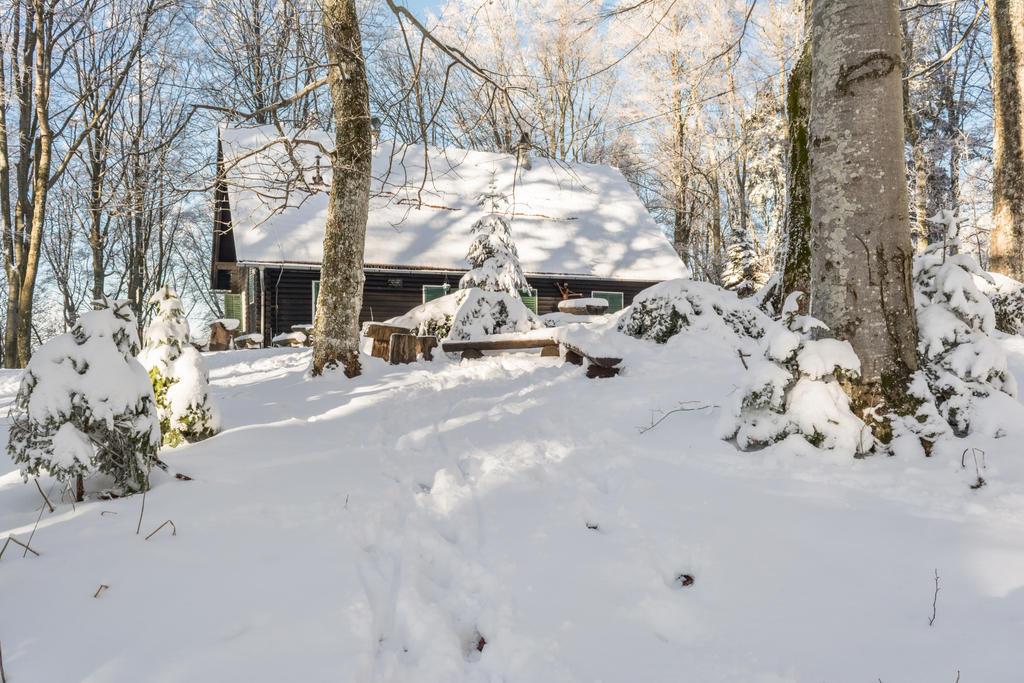 Winter by darkoantolkovic