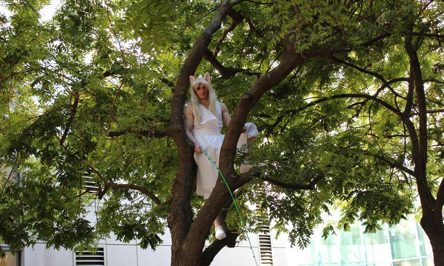 Yoko Kurama - In Tree by volko-dav