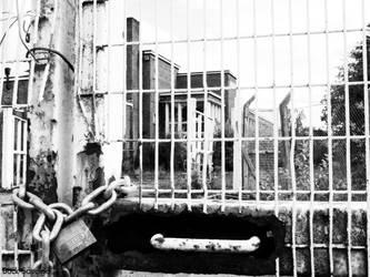 Denied Freedom by Buck-Savage