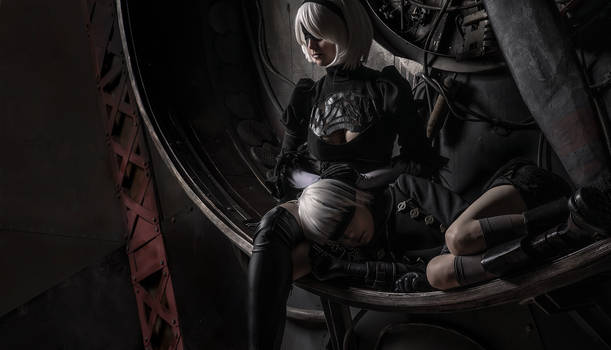NieR: Automata - 2B and 9S cosplay