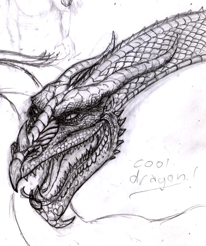 Really Cool Dragon Drawings | www.imgkid.com - The Image ...