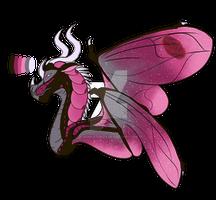Valentine Beetle