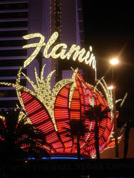 Flamingo Hotel in Las Vegas by SingOneWeKnow