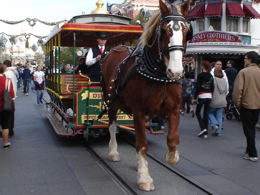 Horse Elegant Carriage by Darklight-phoenix