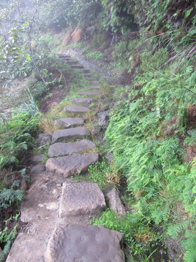 Secret path into mountain hideout by Darklight-phoenix