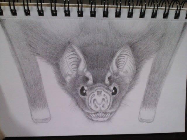 Vampire Bat by WolfSongLuna