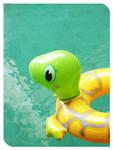 hey mr. turtle