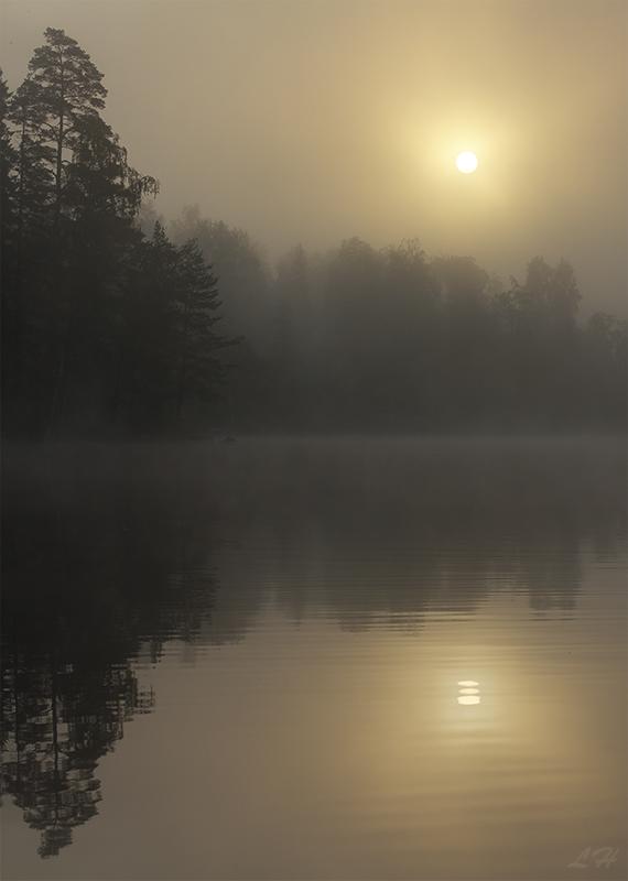 Dreamy Morning by Laazeri