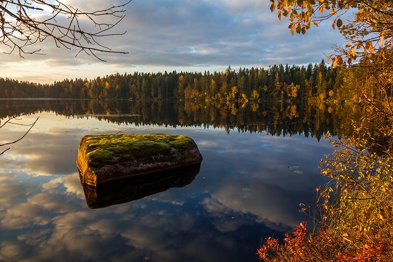 Autumn Colors by Laazeri
