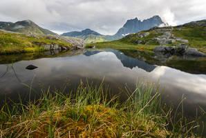 Little Pond by Laazeri