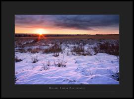 Arctic Morning by yenom