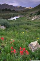 Loveland Pass Ponds