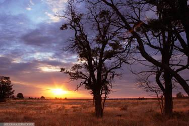 Prairie Dawn by yenom