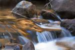 Bronze Flow