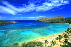 Paradise beach. by divine-Providence