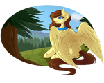 .:Commission:. One With The Forest