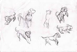 Truemax Drawing Class 14
