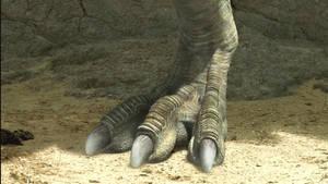 The Dino King-TarbosaurusFeet