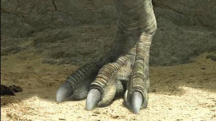 The Dino King-TarbosaurusFeet by GiuseppeDiRosso