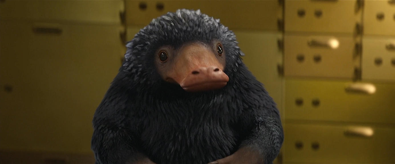 Actual Niffler in all glory
