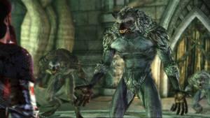Dragon Age Origins-Werewolf 2