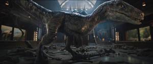 Jurassic World Fallen Kingdom-Blue 5