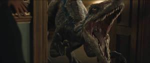 Jurassic World Fallen Kingdom-Blue 8