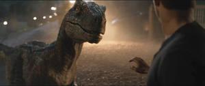 Jurassic World Fallen Kingdom-Blue 9