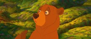 Brother Bear-Kenai 5