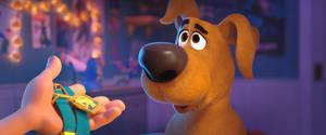 Scoob-Pup Scooby 7