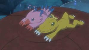 DigimonAdventure2020 E35-Agumon Biyomon