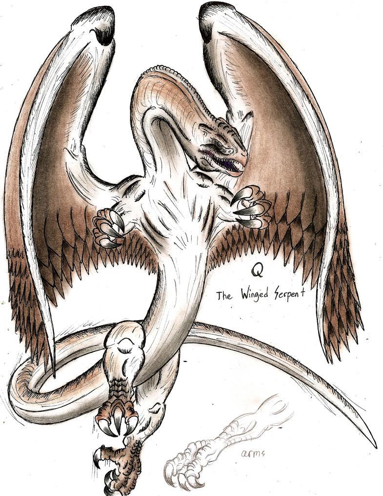 Q The Winged Serpent By Monsterkingofkarmen On Deviantart