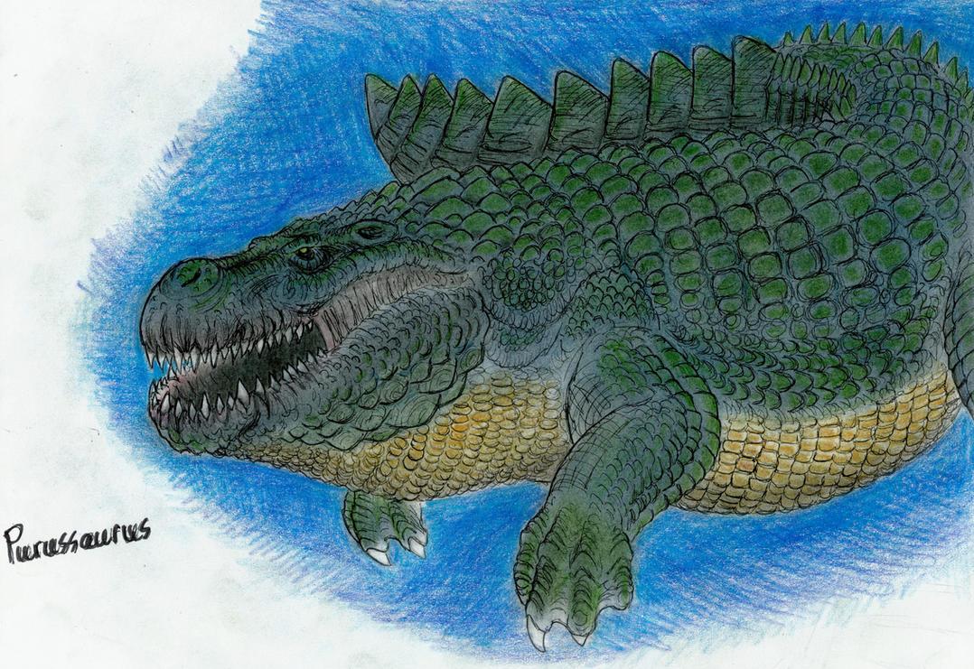 Purussaurus by MonsterKingOfKarmen on DeviantArt
