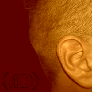 DanDare77's Profile Picture
